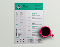 Free Professional Director Resume Template