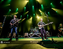 Creedence Clearwater Revisited Doctor Pheabes 26-10-19