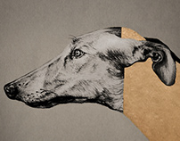 Goldhound