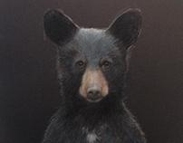 Call Me Bear.