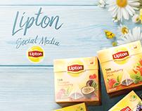 LIPTON// Social Media 2015