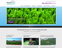 Fake Grass Site