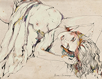 Polly   Illustration