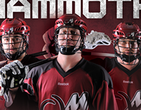 2013 Colorado Mammoth Look and Feel