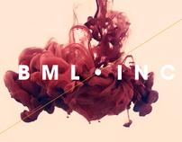 BML INC