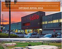 Informe anual 2015 PEI