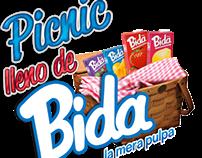 Picnic lleno de BIDA