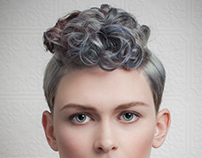 Color Zoom for The Hair Factory 2014