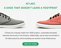 ZShoes - Animated Website (Adobe Site of the Week!)