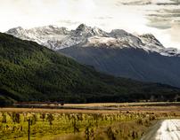 New Zealand II