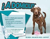 Baño de perros a Domicilio