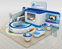 DSM stand