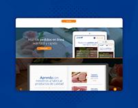 UI / UX Design - Grupo AL Website