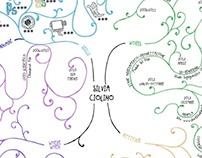 Infographic CV 2013