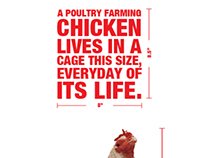 Battery Cage Animal Cruelty Awareness Poster
