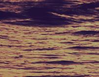 Poesía perdida en la mar
