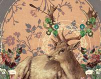 Deer Dandy, 2013.