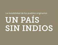 Infografía - Pueblos Originarios - Cátedra Rico 2013