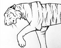 broken tiger