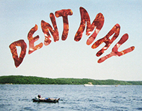 Dent May: Do Things