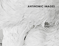 Antinomic images / 2004