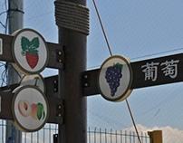 Community Gardening Beijing 2013