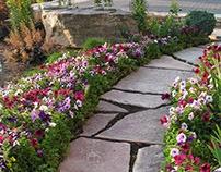 Forging A Path Using Natural Stone