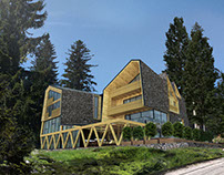 the wooden mountain house
