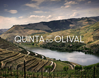 Extra Virgin Olive Oil - Quinta do Olival