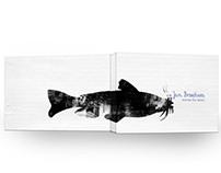 Jan Brzechwa- book