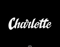 Vintage Wordmark Logo Design