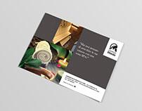 Brochure+website