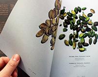 Nuts magazine