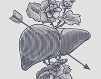 Liver & Flowers