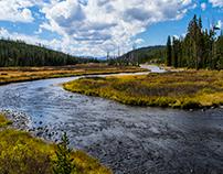 John Reedy at Yellowstone