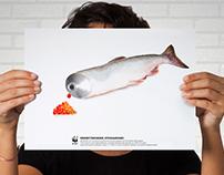 Social Advertising WWF