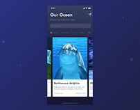 Our Ocean mobile animation