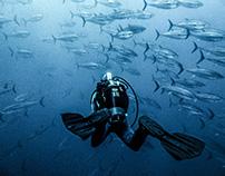 Pesca del tonno a Carloforte