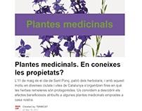 Targetes interactives 'Plantes medicinals'