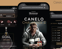 Mobile game - UX/UI for Hennessy