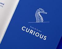 Curious [Branding]