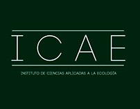 Poster ICAE. Ilustración Digital