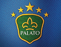 Confederations Cup Palate