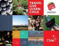 Branding: LearnChile