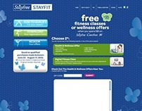 Stayfree Stayfit Site Design
