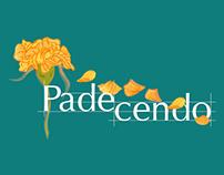 Padecendo