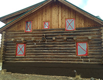 Log Home Maintenance how to book