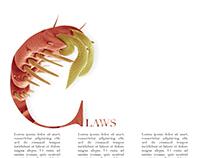 Flea Typography 2
