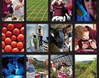 Strategic Plan (VT CALS 2012-18)