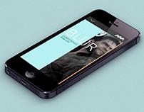 Wellington Motion Festival - Festival App